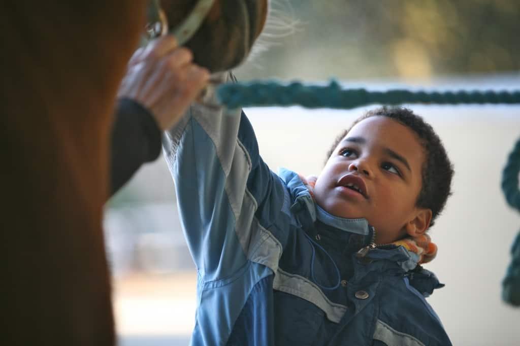 Hipoterapia, terapias a caballo para niños con alguna discapacidad
