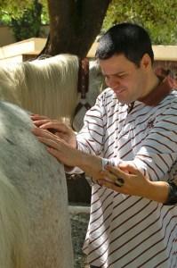 conexion-caballo-2