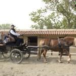 acell_jornada_a_caballo_fundacion_federica_cerda_22