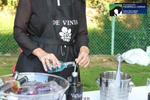 de vinya